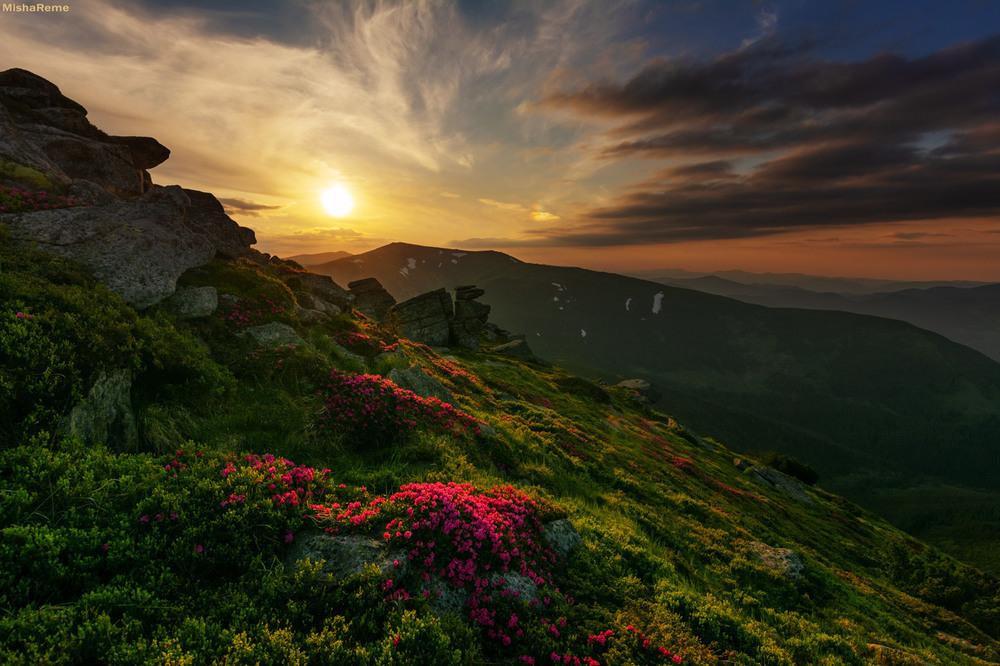 Файний був початок літа;) Автор: Михайло Ременюк