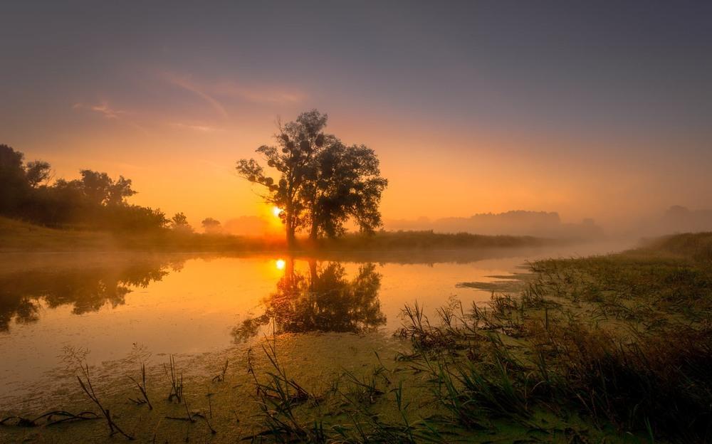 Липневий схід сонця Автор: Ігор Солодовніков