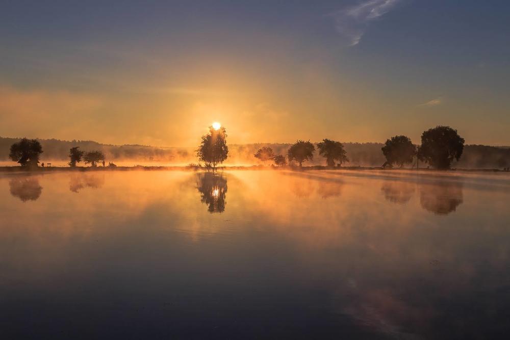 Ранкове полювання Автор: Андрій Косенко