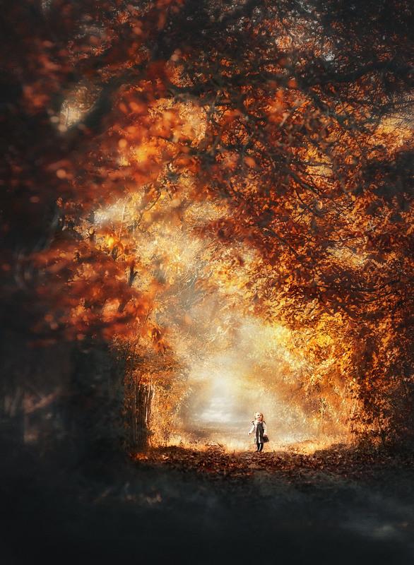 Невідомими стежками... Автор: Оксана Лабяк
