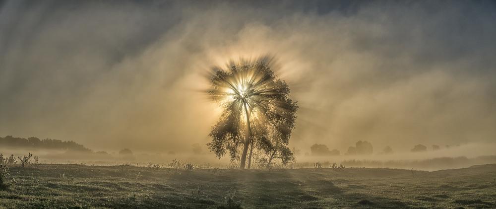 Миколині тумани... Автор: Farernik