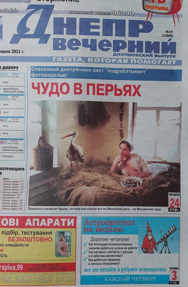 ЧУДО В ПЕРЬЯХ. История фото и публикация в газете.