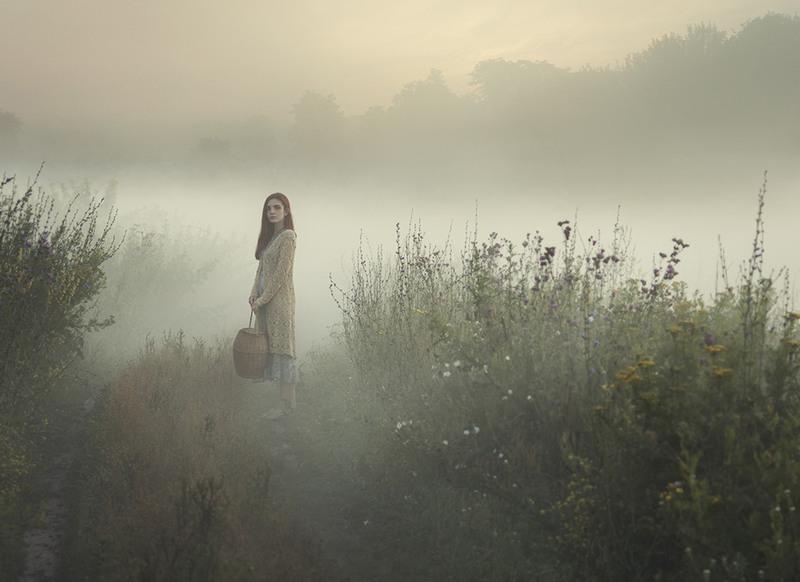 утренний туман Автор: Давид  Д