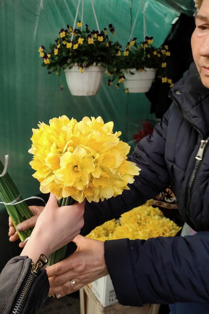 Весняний Привоз(Одеса)