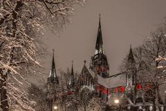 В зимнем наряде) Автор: Ser Grey