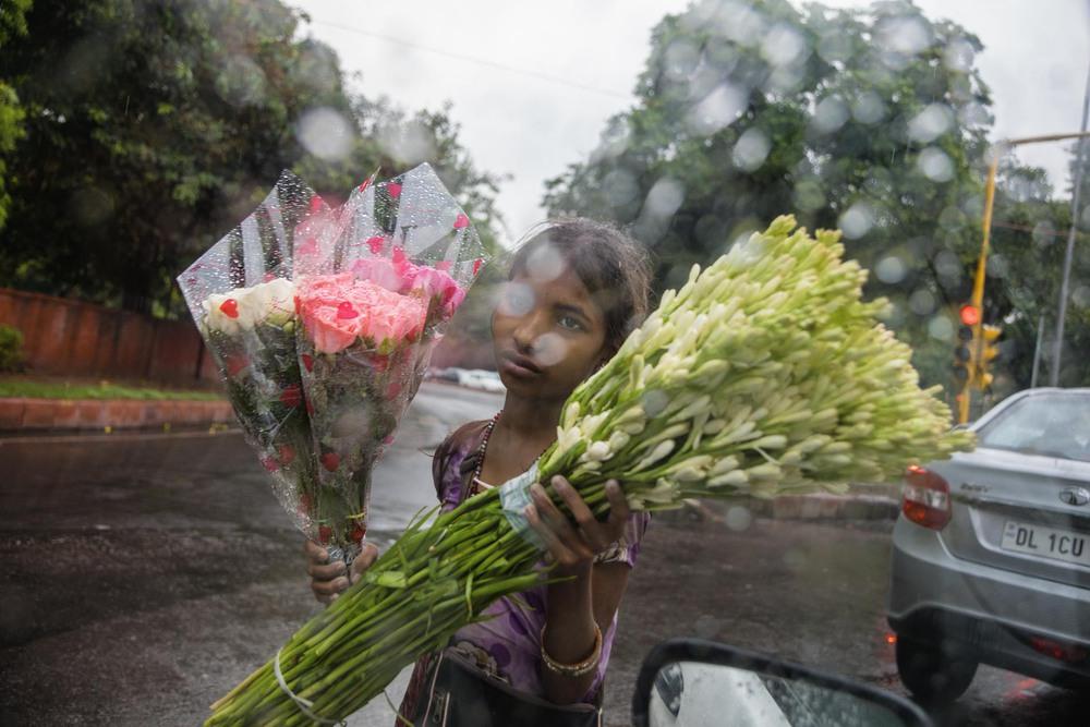 34 Автор: Стефани Синклер. 9-летняя Арти уязвима для сексуального насилия, так как в одиночку продаёт цветы на улице Дели. Несмотря на опасность миллионы детей во всём мире работают, чтобы помочь своим семьям, вместо того, чтобы ходить в школу.