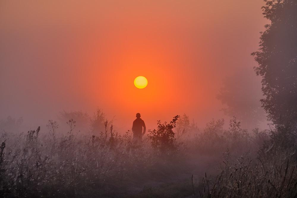 Мисливець за туманами Автор: Николай , Мороз