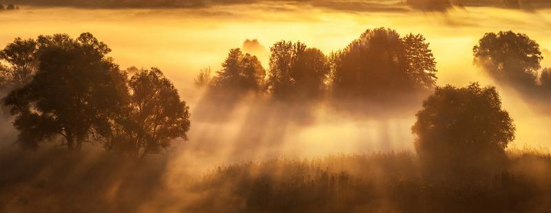 Лучи души Автор: Андрей Алтанец