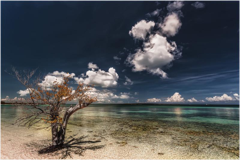 Это Куба детка...(с).остров Кайо-Санта-Мария... Автор: Александр Вивчарик