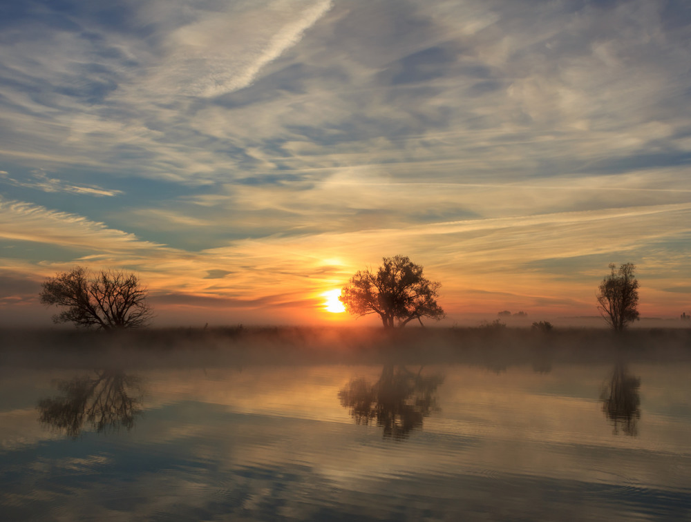Древо жизни посреди рая, и древо познания добра и зла. Автор: Александр Литовко (Др@коша)