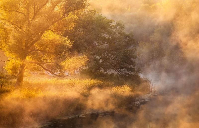 Меж осенью и летом... Автор: Андрей Алтанец