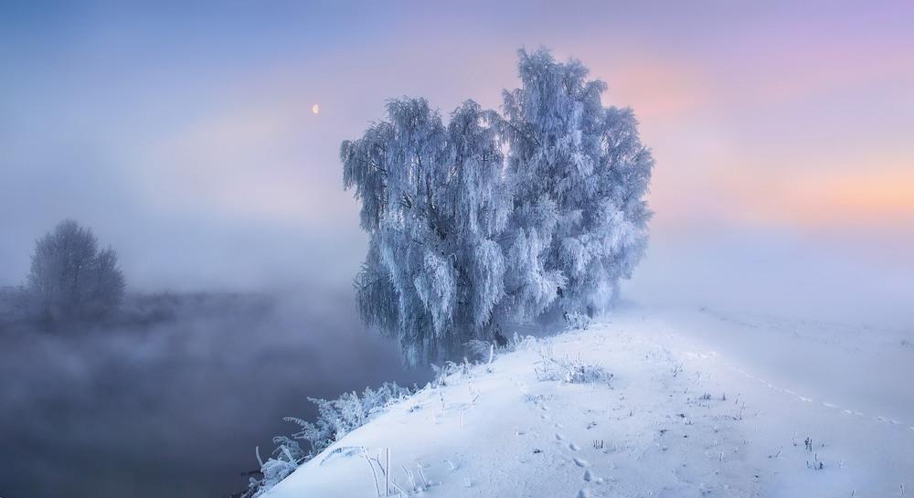 Рождение рассвета Автор: Сергей Шабуневич