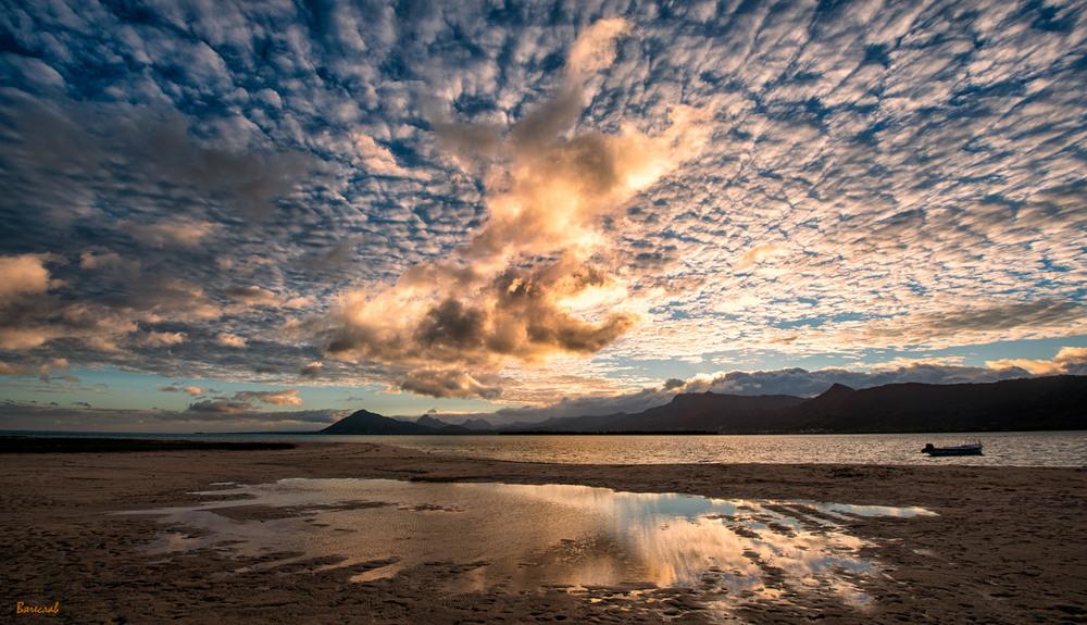Схід сонця на далекому острові, 5 Автор: В'ячеслав