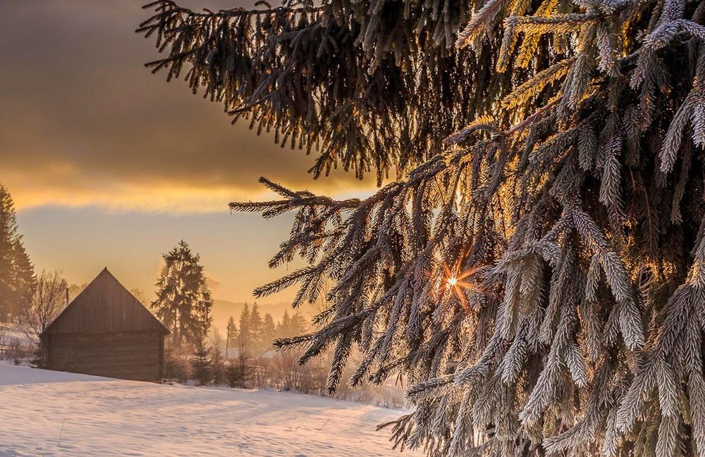 Ранок в Поляниці Автор: Андрій Косенко