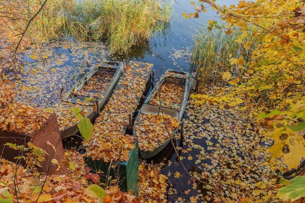 Осенний привал Автор: Андрій Косенко