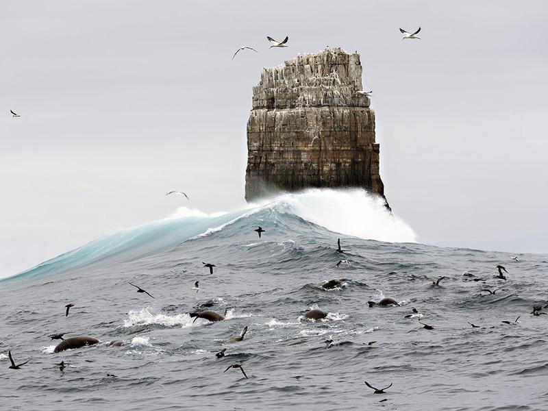 """1 """"Монолитный сбор"""". Автор - Andy Chisholm. На снимке древний остаток материка на расстоянии около 27 км от побережья Тасмании (Австралия)."""