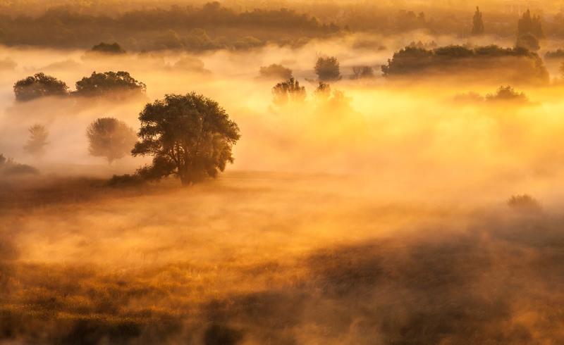 Пылают осени костры... Автор: Андрей Алтанец