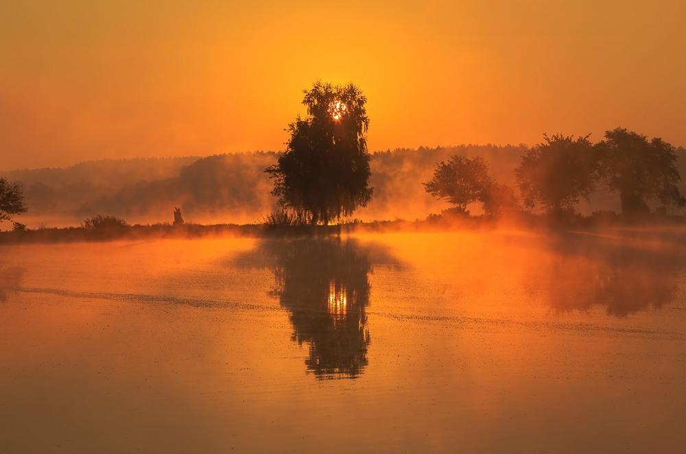 Туманний ранок Автор: Андрій Косенко