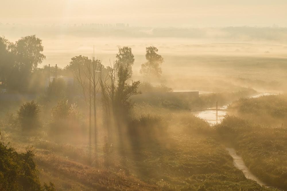 У ранковому тумані Автор: Андрій Косенко