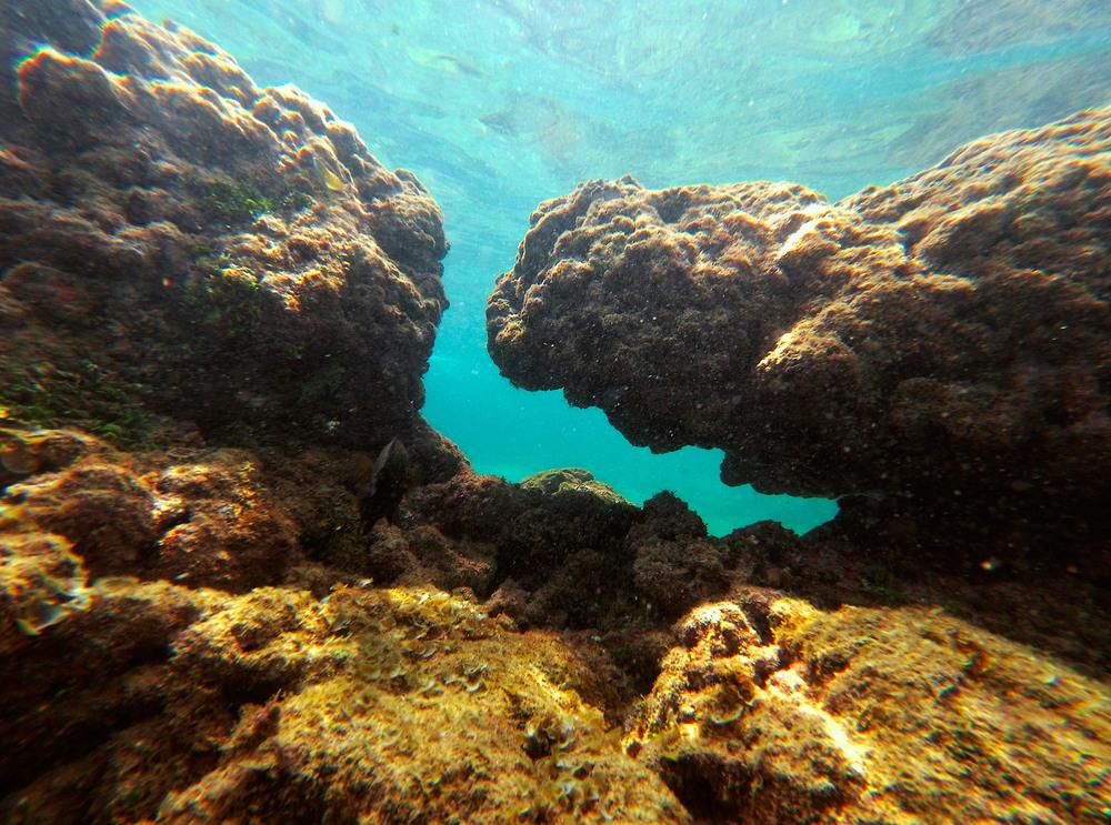8. Підводний світ досить бідненький. Корали сильно постраждали від цунамі 2004р. Хоча риб вдосталь.
