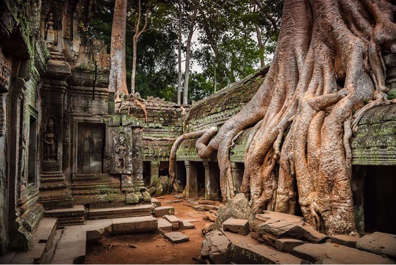 11 Ангкор, Камбоджа. Источник: Pietro Bevilacqua.