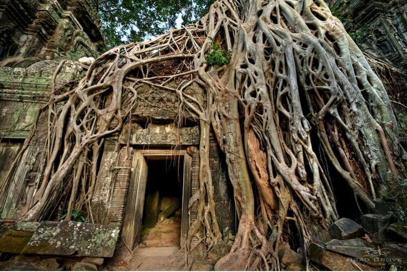 12 Ангкор, Камбоджа. Источник: Brad Grove.