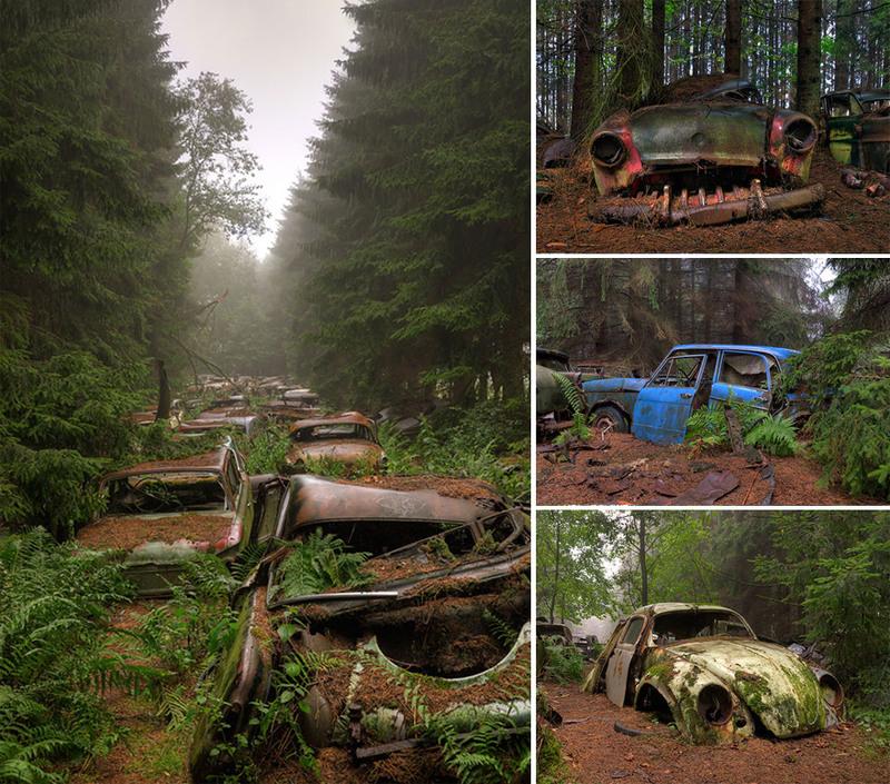 15 Кладбище автомобилей, Бельгия. Источник: Rosanne de Lange.