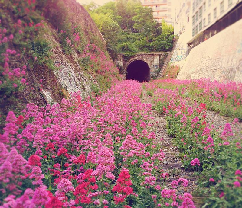 16 Железная дорога в Париже, Франция. Источник: messynessychic.
