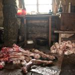 21 Наиболее ценная часть оленьей шкуры — мех с его ног, он называется камус и продается по $10 за штуку.