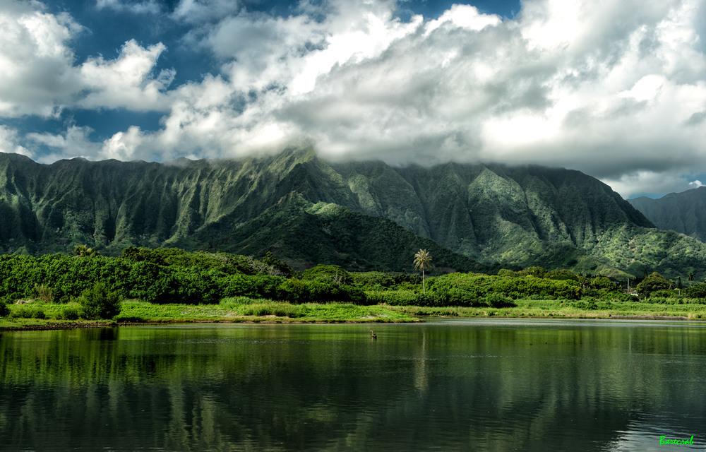 про гавайські гори Автор: В'ячеслав