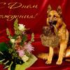 Поздравления от животных с днем рождения картинки