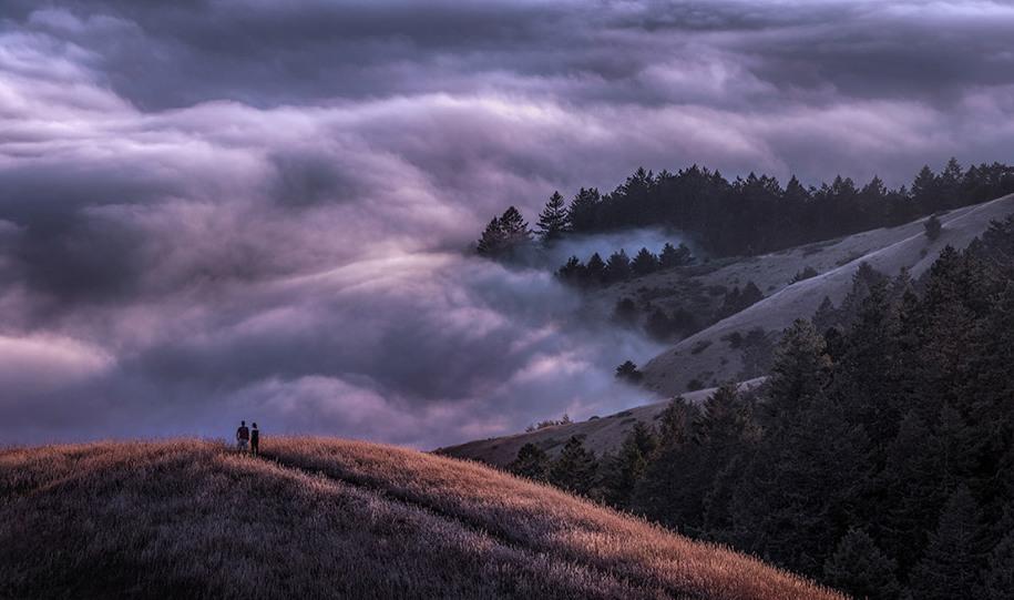 5 Специальный приз сайта DPReview, 2 место. Невероятный туман в горах Калифорнии. Автор: Sapna Reddy