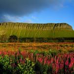 19 Гора Бен Балбен в графстве Слайго. Источник: Christopher Hill
