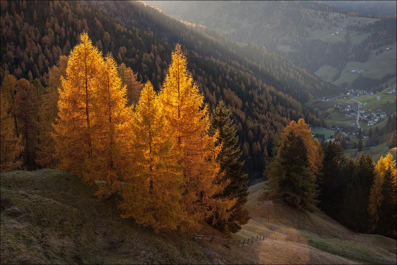 Осенние лампы. Автор: Юрий Шевченко