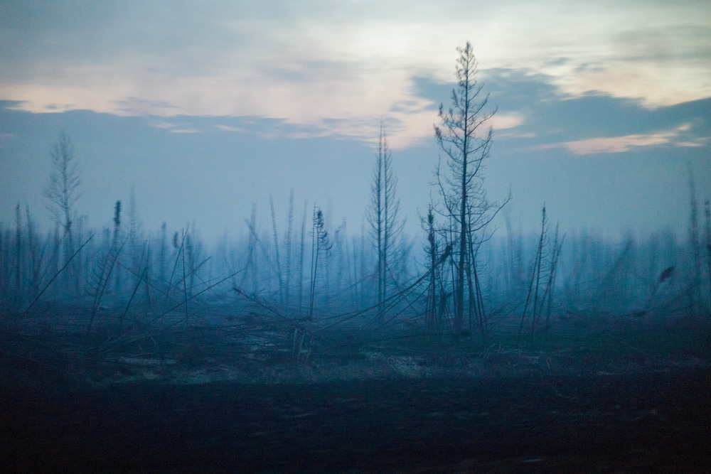 18 Май. Catastrophic wildfires charred this swath of boreal forest and forced the entire population of an oil boom town, about 88,000 people, to evacuate.Ian Willm