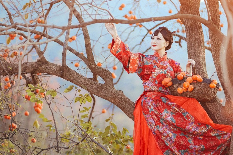 14 Красная хурма. Автор фото: Фан Сяолинь.