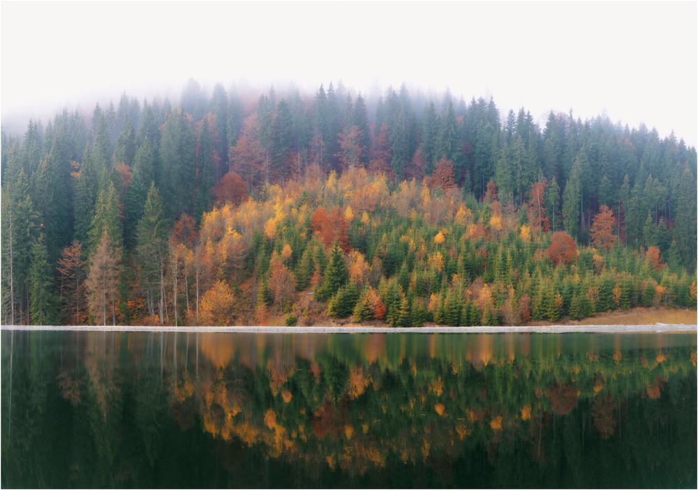 Карпаты. Осень.