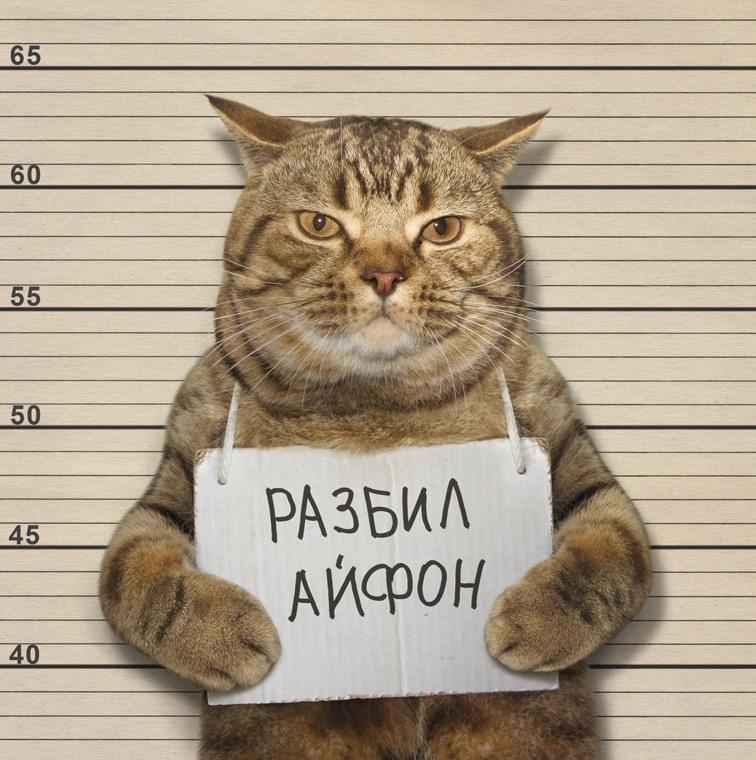Оправдать нельзя помиловать Автор: Ирина Кузнецова