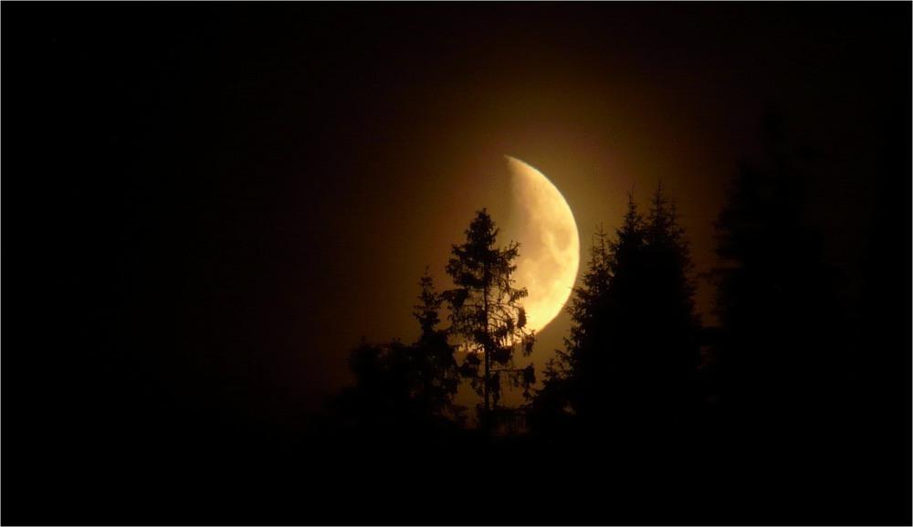 Опівночі на Купала. Автор: Грицько Кромєшний.