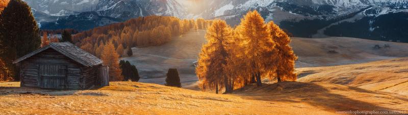 Утренний свет на плато ALPE DI SIUSI Автор: Александр Науменко