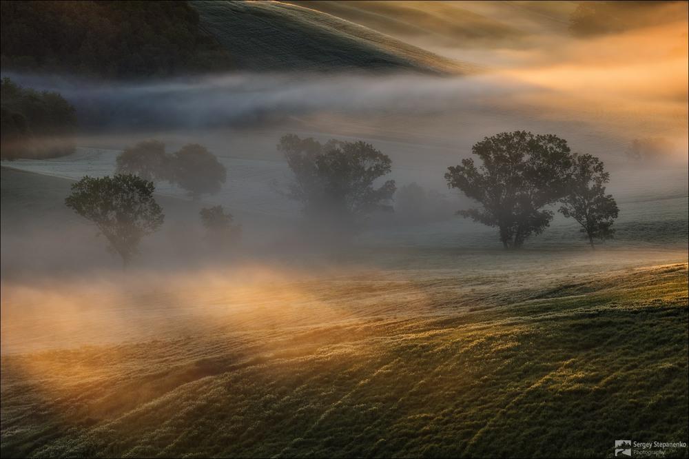 Утро в полях Автор: Sergey Stepanenko