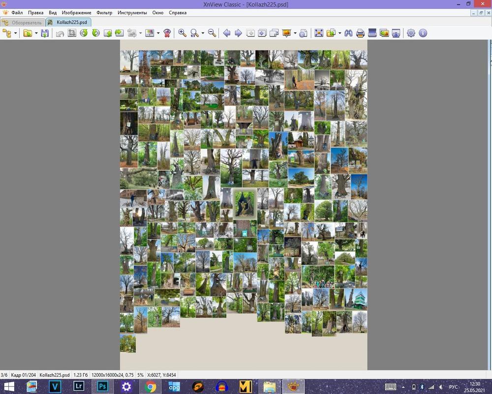 Захист фото від друку більше 1 екз.