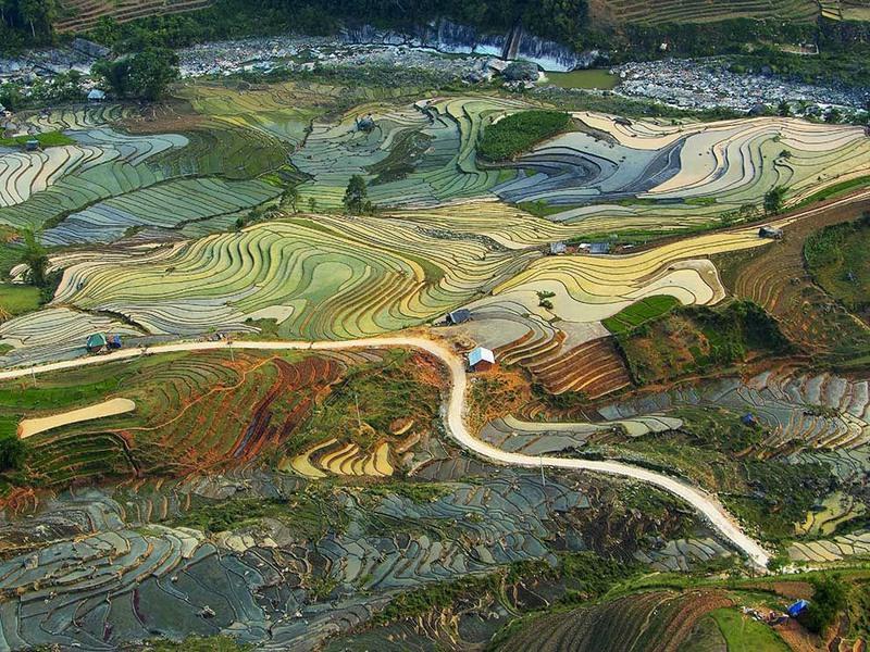 1 «Живопись Земли» Автор: Tuan Guitare. Террасные поля риса вблизи провинции Лао Кай (Вьетнам).