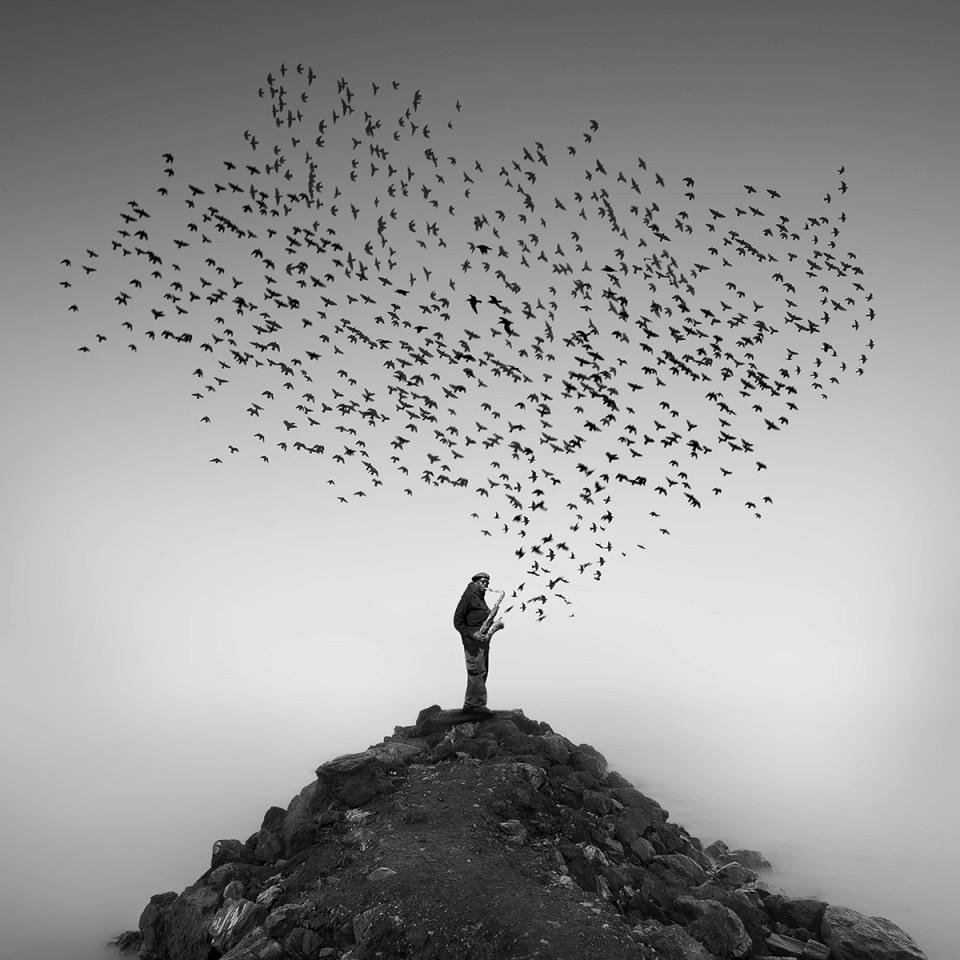 4. Приз зрительских симпатий и титул «Фотограф-абстракционист года» Педро Диаз Молинз (Испания)