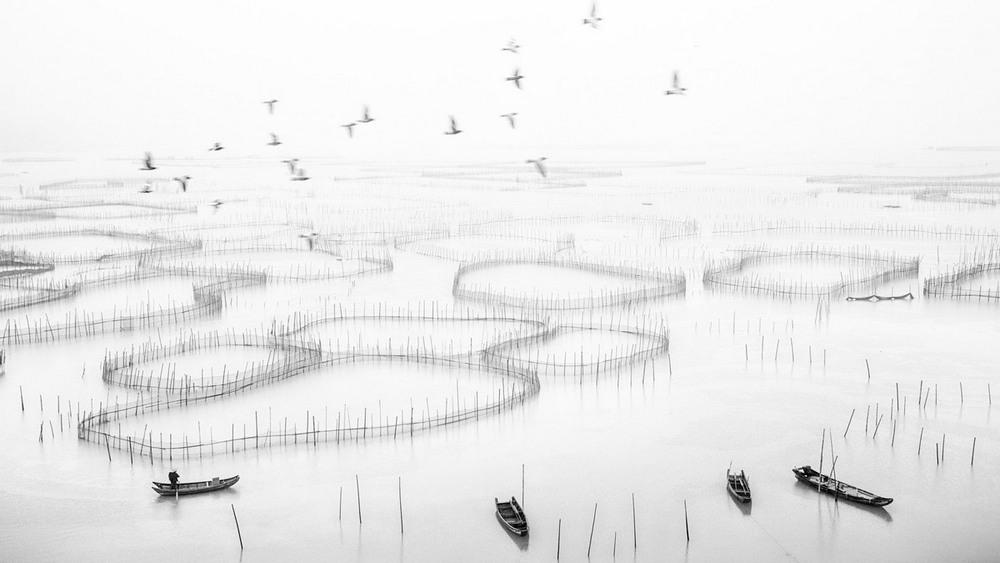6 Поощрительная премия Родина  Автор фото: Xingxing Yang. Место: деревня Цзянбянь, город Фудинг, провинция Фуцзянь, Китай.