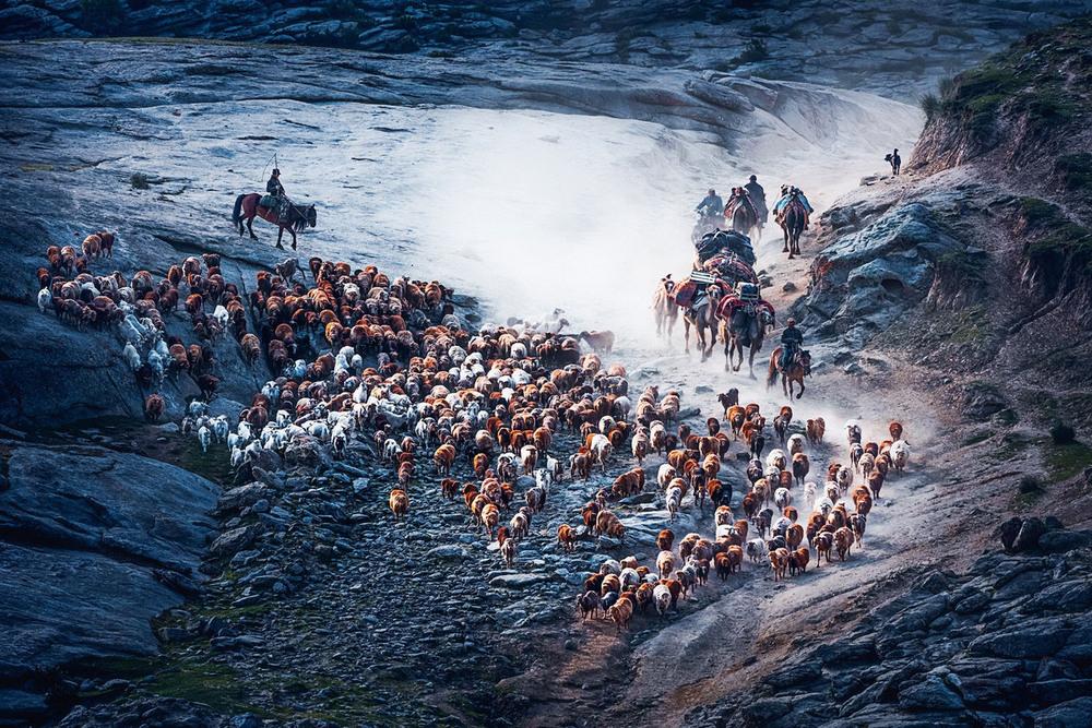 8 Поощрительная премия Хроника перехода Автор фото: Songge Cui. Место: Синьцзян, Китай.