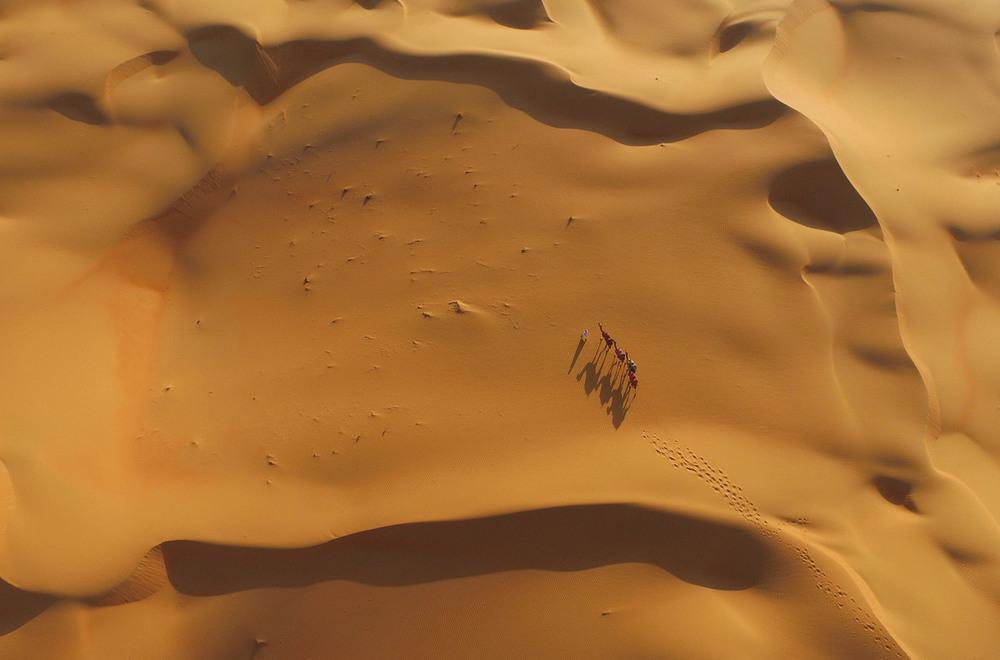 16 Почётное упоминание   Корабль пустыни  Автор фото: Mohammad Awadh.