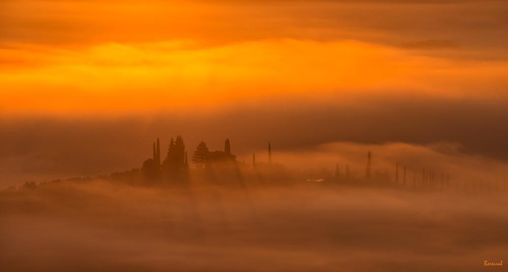 Червоне золото туманного світанку Автор: В'ячеслав