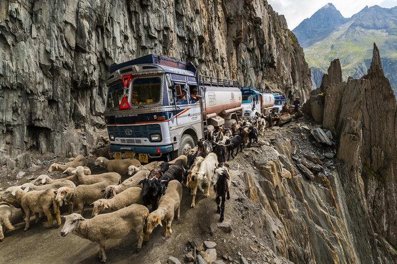 1 Зоджи-Ла, Индия. Протяженность - 9 км., соединяет поселки Ладакх и Кашмир. Невероятно узкая дорога, на которой кроме автомобилистов преодолевает свой путь и домашний скот.