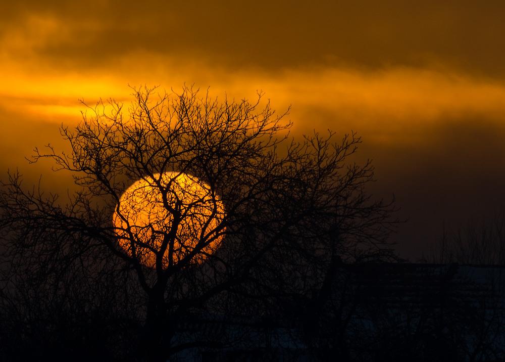 Виглянуло сонечко на мить та й сховалося Автор: Юрій Бабич